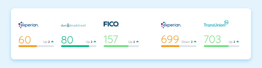 FICO SBSS Credit Score - Nav Premium Plus Account