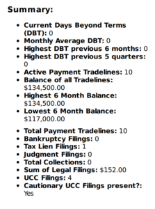 Summary section of business credit report