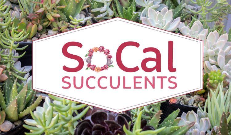 Meet SoCal Succulents: Nav's Business Grant Runner-Up