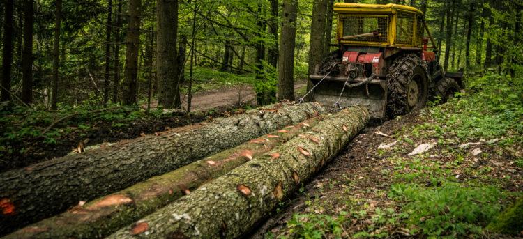Logging Equipment Financing Options in 2020